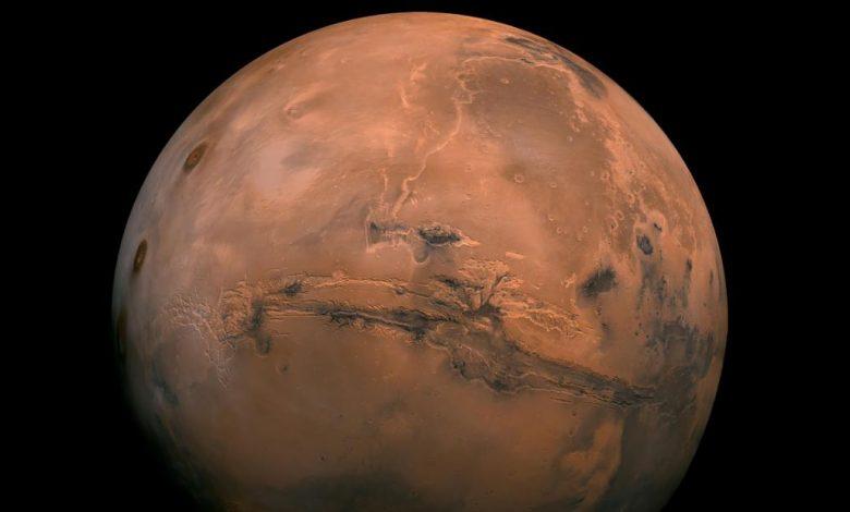 Elon Musk wants to settle on Mars. Is it profitable?