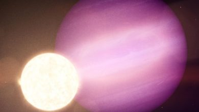 Photo of First, astronomers have discovered a giant planet orbiting a dead star
