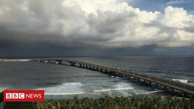 Photo of China credit dogs 'Maldives' 'bridge to prosperity'