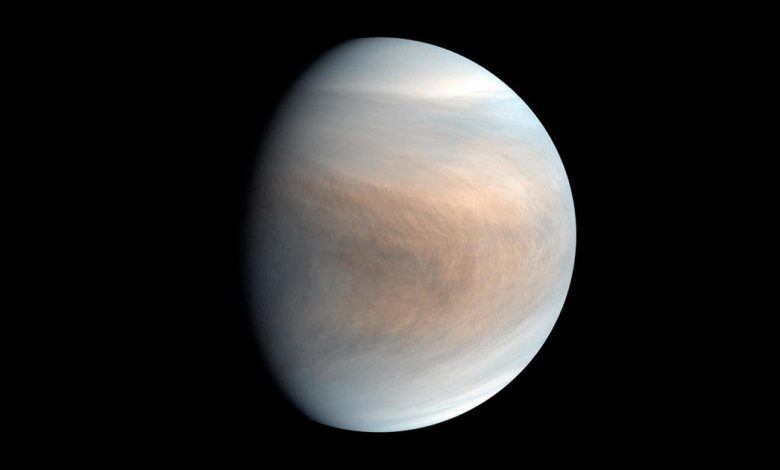 Astronomers can find a possible sign of life on Venus