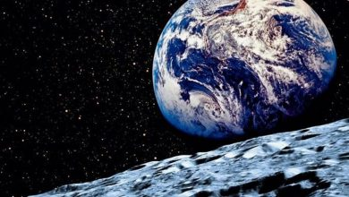 Photo of Earth is set to receive a new mini-moon – but astronomers are confused by its appearance Science | News
