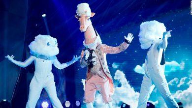 Photo of 'Mask Singer' reveals former teen heartthrob behind giraffe
