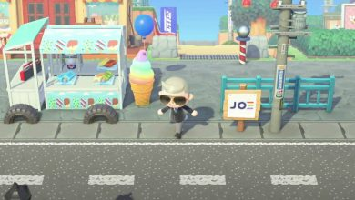 Photo of How to visit Joe Biden Island at Animal Crossing