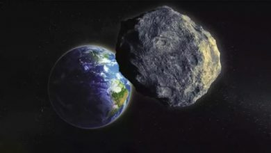 Photo of Asteroid could strike Earth Day before election: astronomer Neil de Cross Tyson