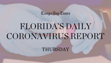 Photo of Florida adds 5,558 corona virus cases, highest daily since August