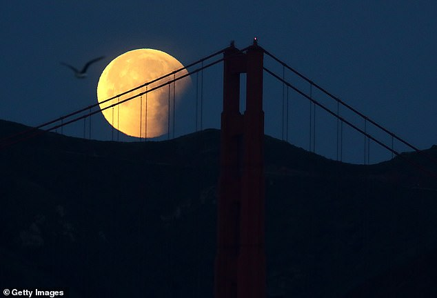 Legend has it that ghosts and spirits are very active on Halloween, but these goliath companies are not the only ones coming out on October 31st - a rare Blue Moon rising on the same day. A Blue Moon picture hanging in San Francisco, California in 2018