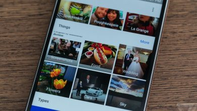 Photo of Google wants to help you train its AI by labeling images in Google Photos