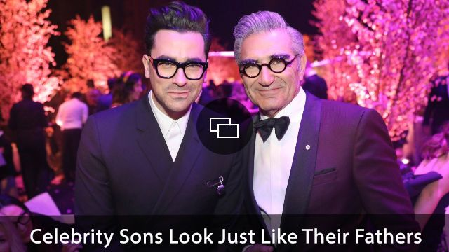 Eugene Levy, Don Levy