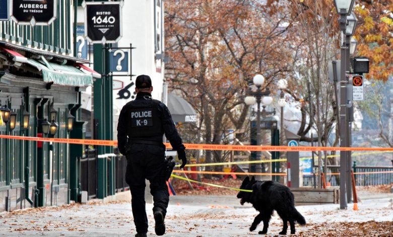 Canadian Katana killer arrested following Halloween hacking