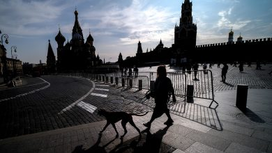 Photo of Moscow will act with the winner of the US election