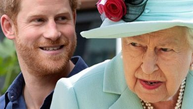 Photo of Queen's big note that Prince Harry's 'meaningful' royal role could be 'restored' next year | Royal | News