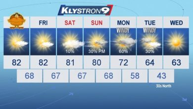 Photo of Tampa Bay is likely to have its coldest weather since February next week