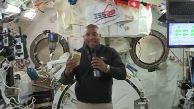 Photo of Thanksgiving 2020: Here's what astronauts will eat in space (video)