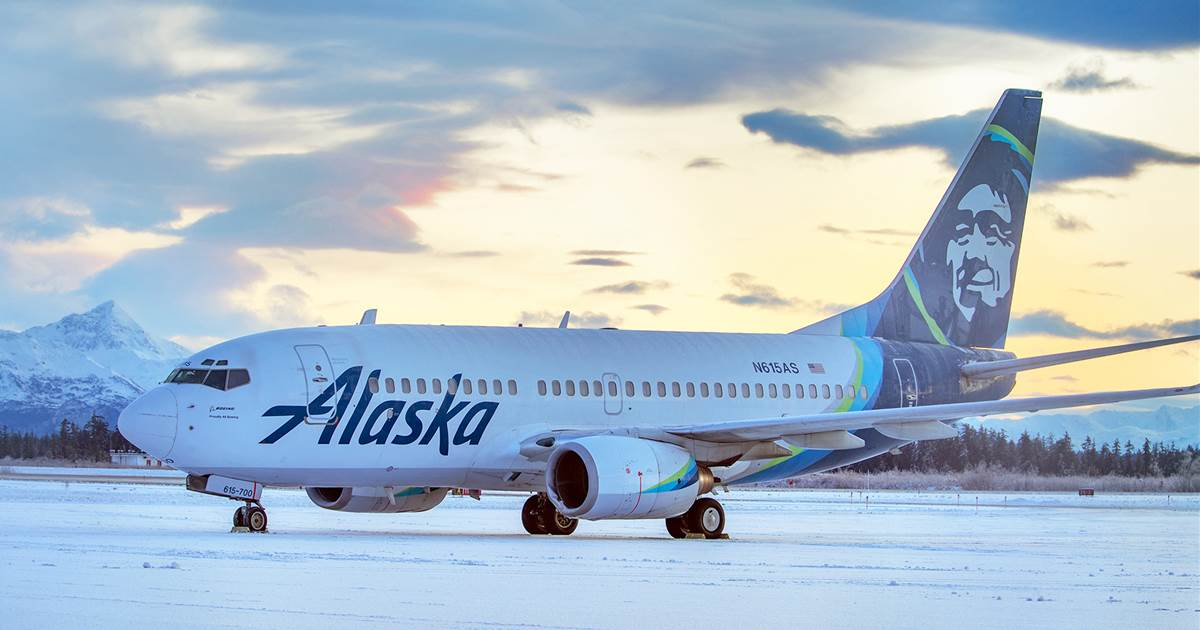 The jetliner attacked the brown bear while landing in Alaska