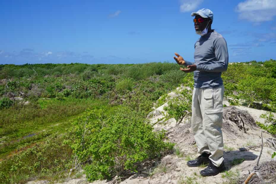 According to local marine biologist John Musington, the region's wetlands are protected by a global treaty.