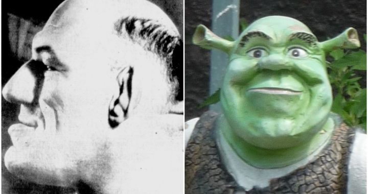 Shrek's appearance may be based on a French wrestler