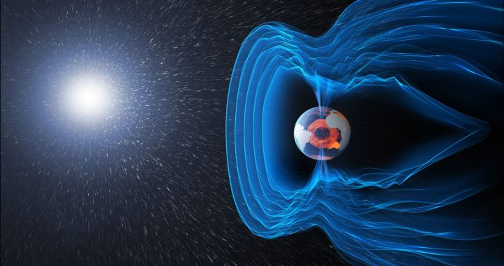 Inversion of the geomagnetic field linked to extinction waves 42,000 years ago