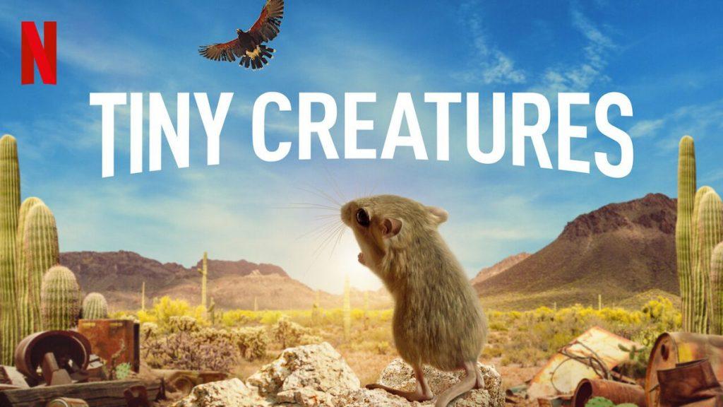 New on Netflix: Tiny Creatures