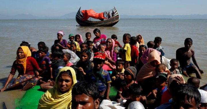 UNHCR sounds the alarm on Rohingya in distress at sea