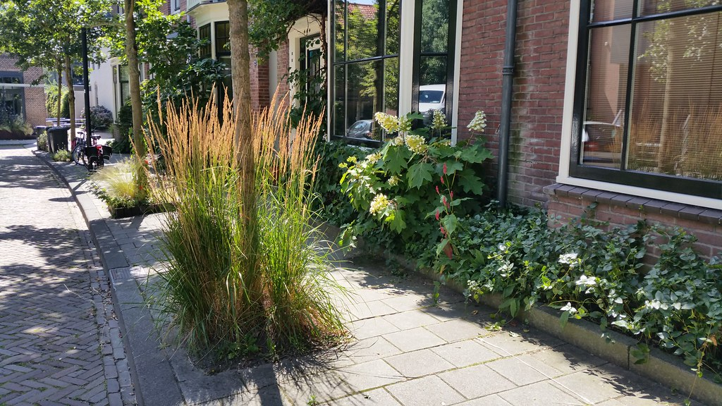 The municipality of Waalwijk participates in Steenbreek