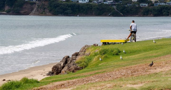 New Zealand withdraws evacuation order after earthquakes