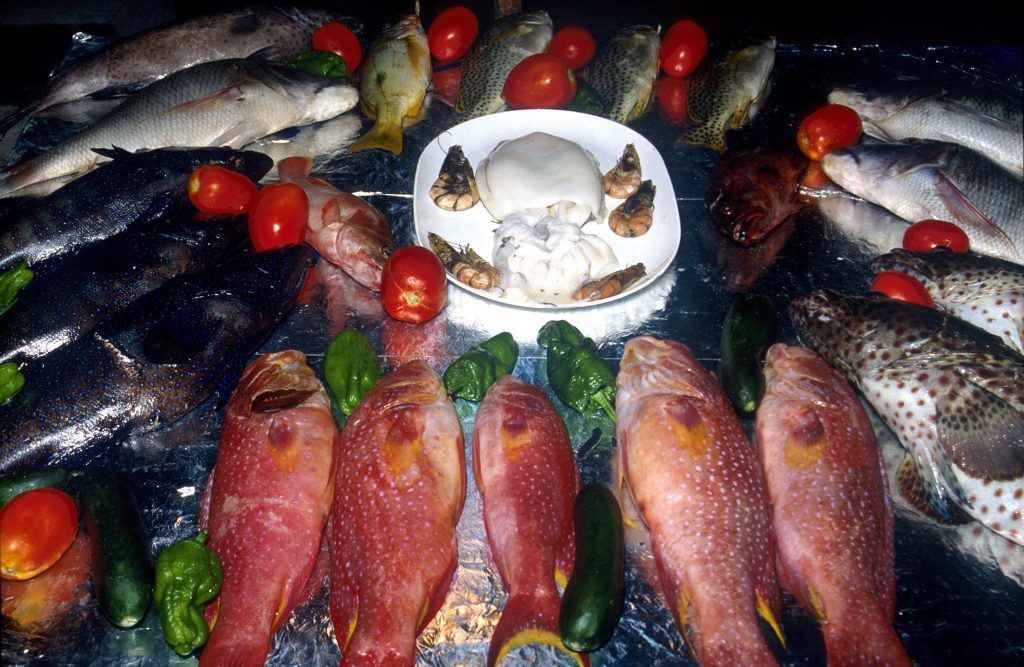 more than a third of all fish sold are actually cheaper species - Wel.nl