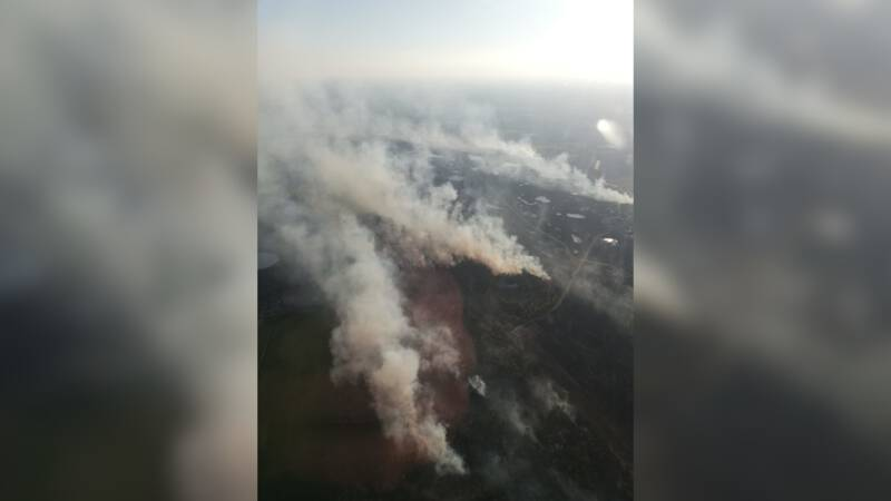 Big forest fire in Flanders after an army exercise