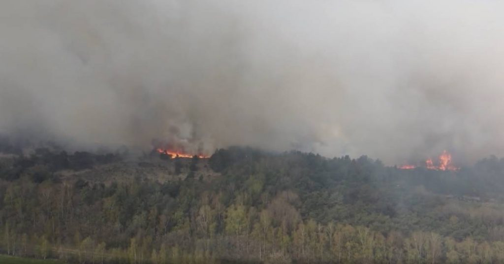 Major fire in Belgian nature reserve just across border at Zundert is under control, evacuated residents allowed to return home |  112 and crime