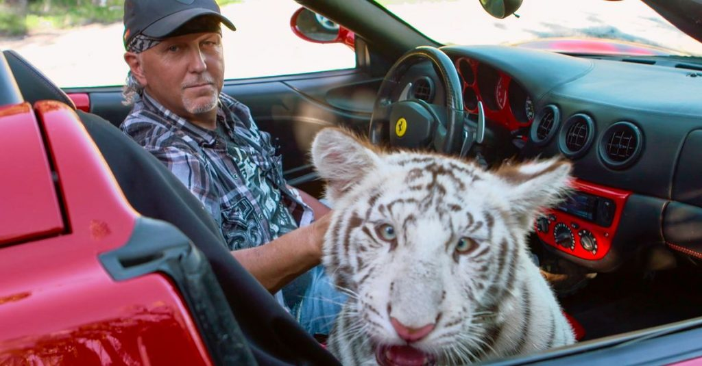 Nearly 70 felines from Tiger King merchant Lowe were seized