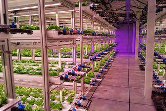 vertical farming WUR