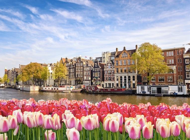 Canadezen gaan naar Nederland in Europa