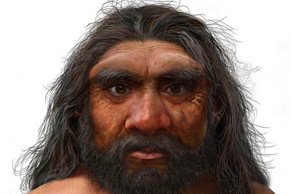 Discovery of a new hominid that appears to be even closer to us than Neanderthals