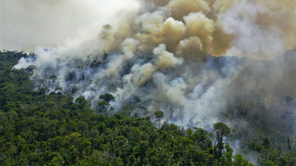 Deforestation and record drought in the Amazon, where the forest fire season is now starting