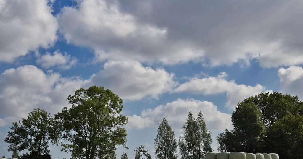 The weather forecast: Place in the sun and maybe an afternoon shower |  Zwolle Blog