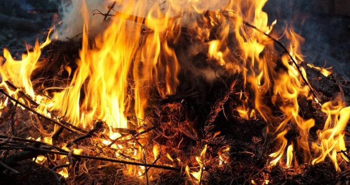 Leiden researchers: the use of fire spread rapidly across the world 400,000 years ago
