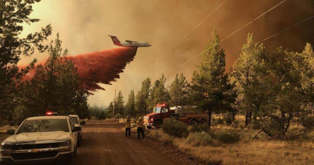 State of emergency in British Columbia due to ongoing forest fires |  Abroad