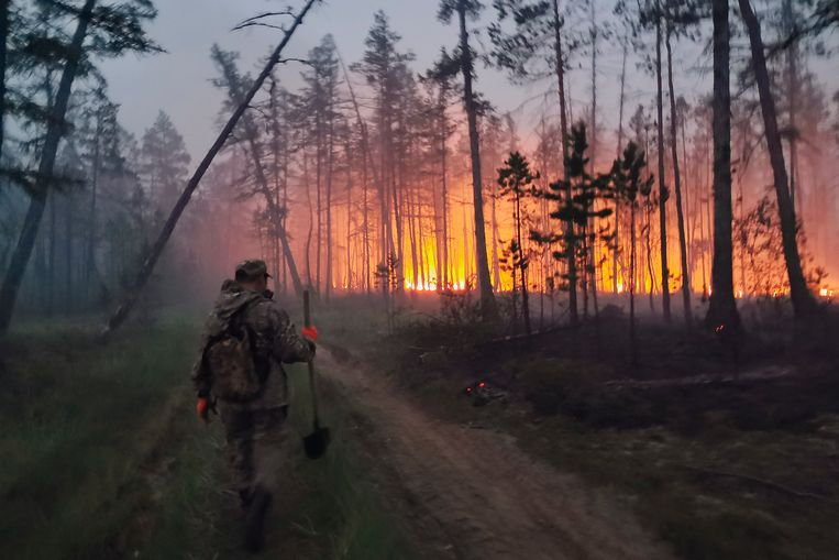 """Wildfires in US and Siberia after extreme drought and heat: """"Extremely disturbing and no one has a good answer"""""""