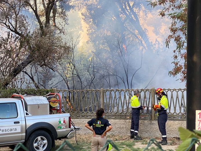 Firefighters are fighting the blaze in the Pineta Dannunziana nature reserve in Pescara.