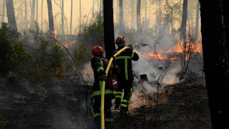 Forest fires in France and Greece not yet under control