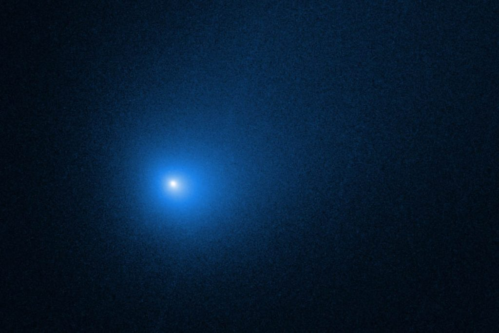 """""""Our"""" Oort cloud may have more interstellar visitors than native objects"""