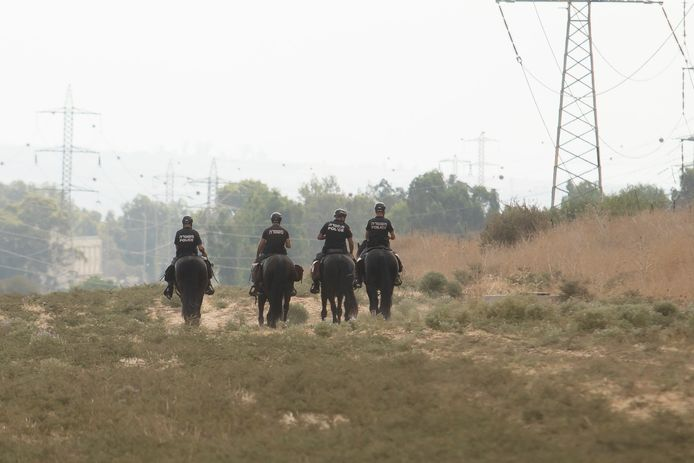 Security forces on horseback during the manhunt.