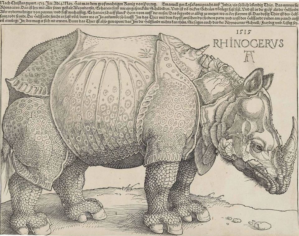 Rhinocerus, woodcut by Albrecht Dürer from 1515