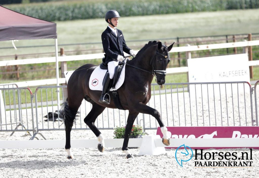 Champions Duvals Zeeland Dressage Cup of Lord Leatherdale, Capri Sonne Jr. and Toto Jr.