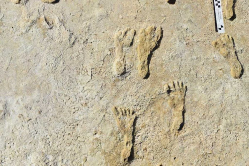 Footprints prove humans roamed America 23,000 years ago