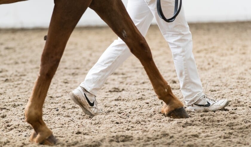 """Noëmi Diede with 85.5 points at the IBOP Zeeland: """"An overall optimal performance"""""""