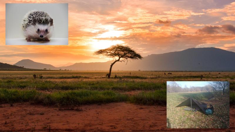 Judith goes to Africa - Regionieuws Hoogeveen