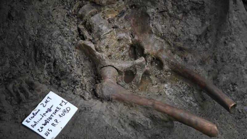 Archaeologists find skeleton of Vesuvius eruption victim after 25 years