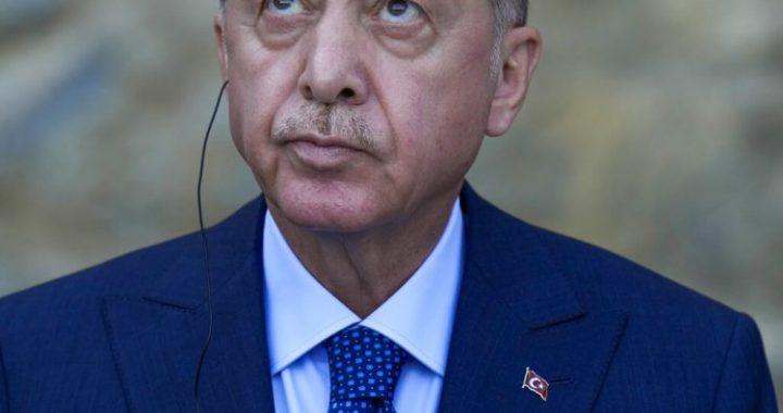 Erdogan orders the resignation of 10 ambassadors, including the American envoy