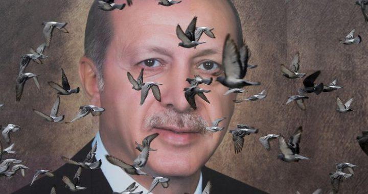 Erdogan's threats low in relations with NATO allies