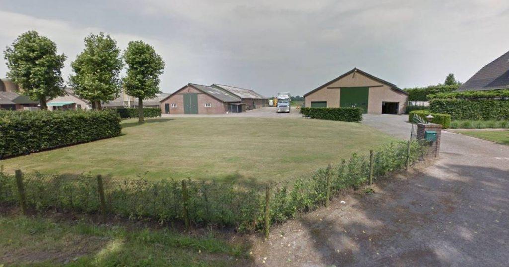 Oisterwijk aims for a new pot so that the Westend no longer smells like pork |  Cattle breeding in Oisterwijk